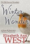 A Winter Wonder (Seasons of Serendipity, #5)