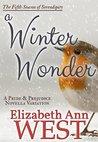 A Winter Wonder (Seasons of Serendipity, #5)