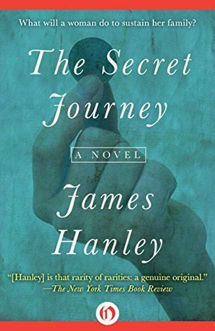 The Secret Journey: A Novel (The Furys Saga Book 2)