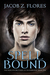 Spell Bound (The Warlock Brothers of Havenbridge, #1)