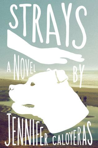 Strays by Jennifer Caloyeras