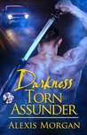 Darkness Torn Asunder (Paladins of Darkness, #9.5)