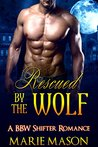 Rescued by the Wolf (The McCall Brothers Trilogy, #2)