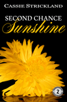 Second Chance Sunshine (Armstrong Securities, #2)