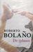 De ijsbaan by Roberto Bolaño