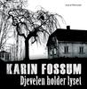 Djevelen holder lyset by Karin Fossum