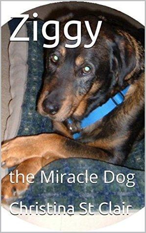 Ziggy, the Miracle Dog