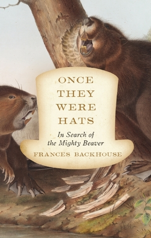 once-they-were-hats-in-search-of-the-mighty-beaver