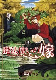 魔法使いの嫁 3 [Mahou Tsukai No Yome 3] (The Ancient Magus' Bride, #3)