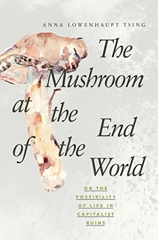 anna tsing, mushroom at the end of the world
