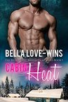 Cabin Heat (Billionaire Redemption, #1)