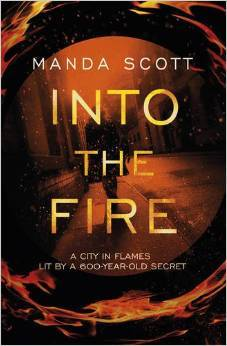 Into the Fire (Capitaine Inés Picaut, #1)
