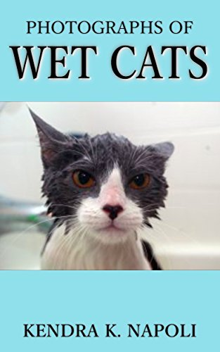 Wet Cats: A Photographic Collection of Damp Felines