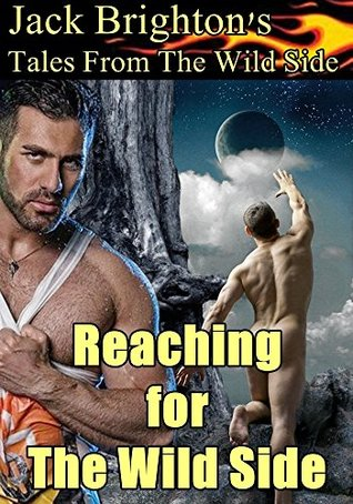 Reaching for The Wild Side: Flaming Hot Gay BDSM (Tales from The Wild Side Book 11)