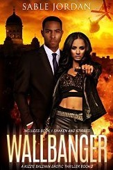 Wallbanger (Kizzie Baldwin Erotic Thriller, #2) by Sable Jordan
