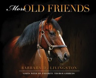 more-old-friends-visits-with-my-favorite-thoroughbreds