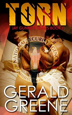 torn-young-adult-and-contemporary-adult-romance-jay-gunner-series-book-1
