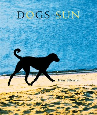Dogs in the Sun by Hans W. Silvester