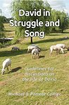 David in Struggle and Song: Guidelines for discussions on the life of David (Unravel the Truth Book 5)