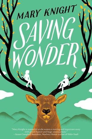 Saving Wonder by Mary Knight