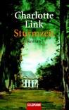 Sturmzeit (Sturmzeit, #1)