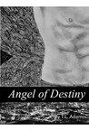 Angel of Destiny: (Erotic Romance)
