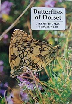 butterflies-of-dorset