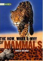 The how, what & why of mammals (Literacy World Satellites Non-Fiction)