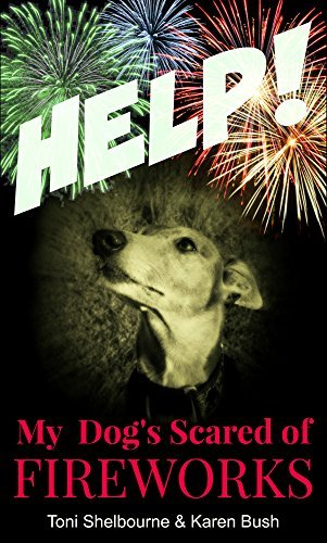 HELP! My Dog is Scared of Fireworks