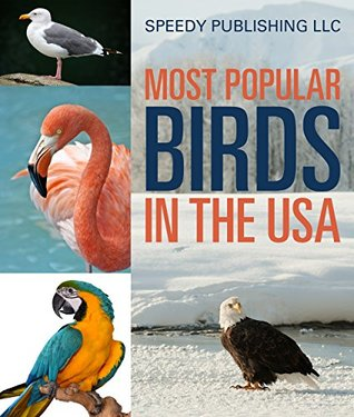 Most Popular Birds In The Usa Children S Picture Book Of Birds By