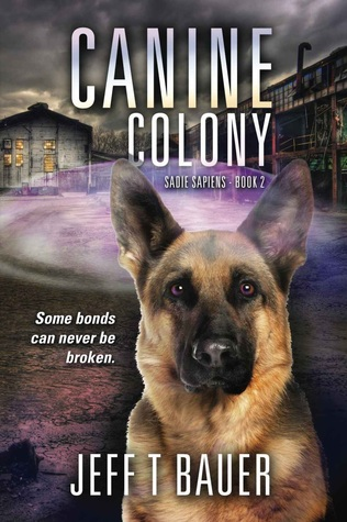 canine-colony