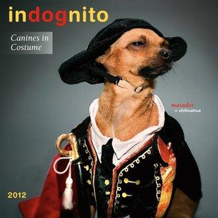 Indognito 2012 Wall (calendar)