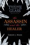 The Assassin and the Healer by Sarah J. Maas
