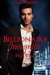 Billionaire Incognito: Part Two