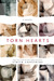 Torn Hearts (Hearts, #1.5) by Claire Contreras