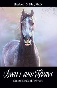 Swift and Brave: Sacred Souls of Animals