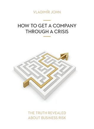 How To Get a Company Through a Crisis (The Truth Revealed About Business Risk Book 2)