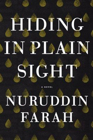 Hiding in Plain Sight: A Novel