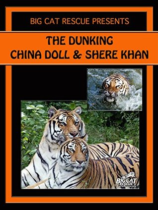 The Dunking: Shere Khan Tiger Gets Into BIG Trouble