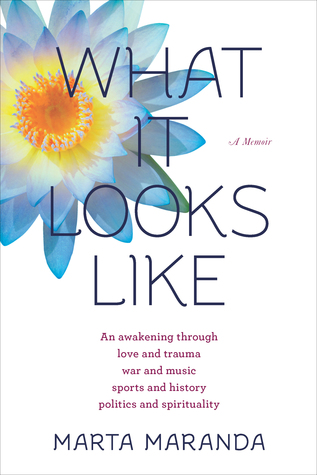 What It Looks Like: An Awakening Through Love and Trauma, War and Music, Sports and History, Politics and Spirituality