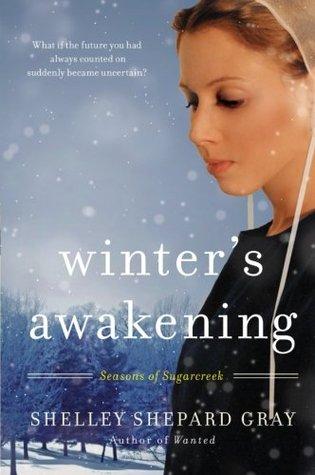 Winter's Awakening (Seasons of Sugarcreek, #1)