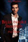 Billionaire Incognito: Part Three