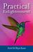 Practical Enlightenment by Ariel Kane