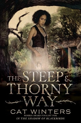 The Steep & Thorny Way by Cat Winters