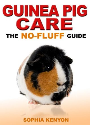 Guinea Pig Care: The No Fluff Guide (No Fluff Guides)