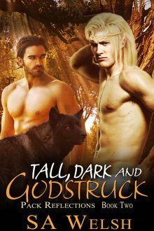 Tall, Dark and Godstruck (Pack Reflections, #2)