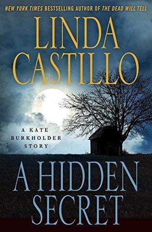 A Hidden Secret (Kate Burkholder, #6.5)