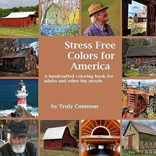 Stress Free Colors for America: A handcrafted coloring book for adults and other big people (Stress Free Coloring Books for Adults and Other Big People 1)