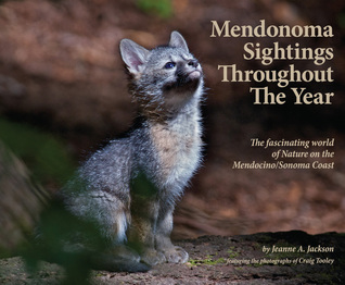 Mendonoma Sightings Throughout The Year; The fasinating world of Nature on the Mendocino/Sonoma Coast