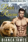 Bear Rescue (Big Bear Mountain, #1)